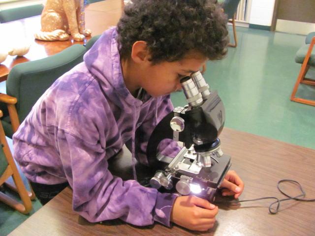 spca-safari-camp-microscope