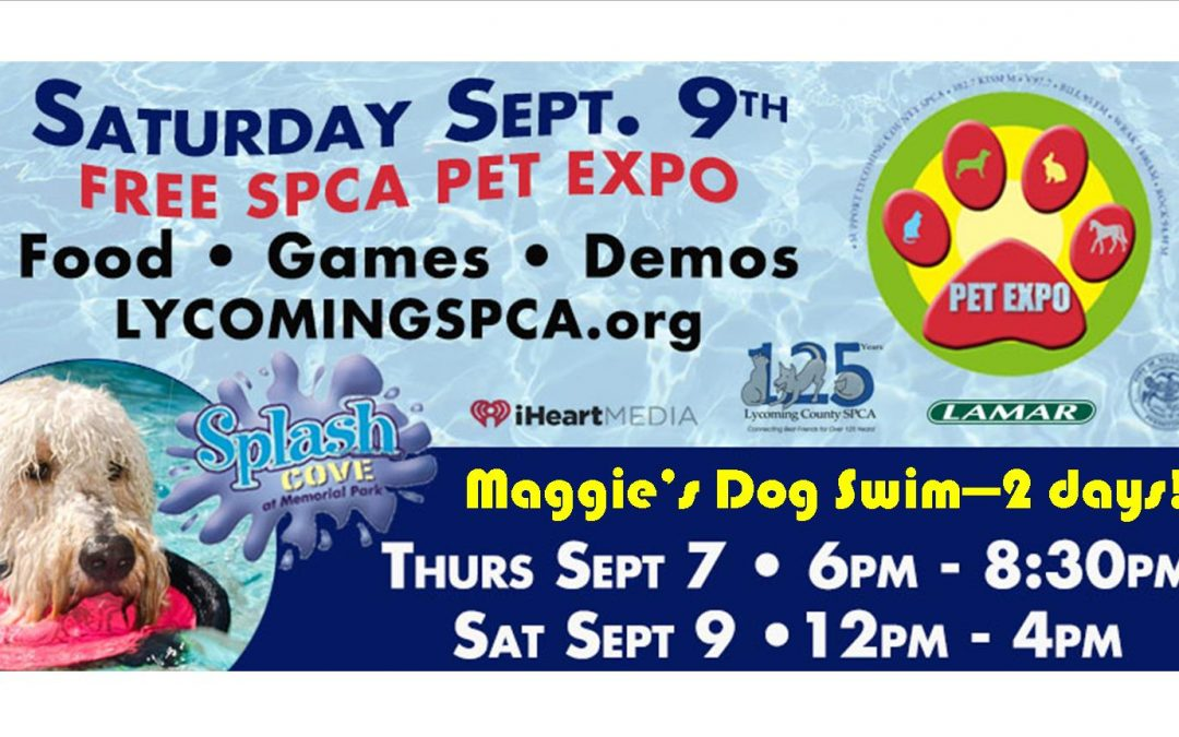 Upcoming 12th Annual Pet Expo & Maggie's Dog Swim – Sept 9, 2017