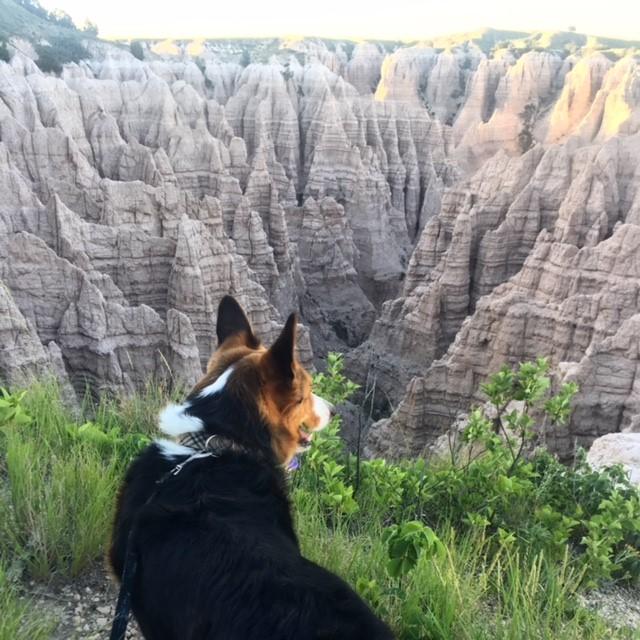 Thurston's Adventure: Destination #1 – South Dakota